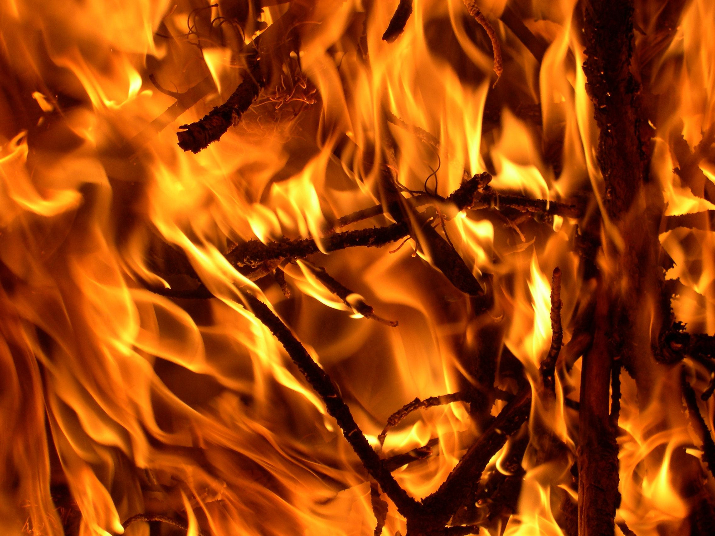 Doctor's Orders: The Burning Sensation Down There Might Be Prostatitus